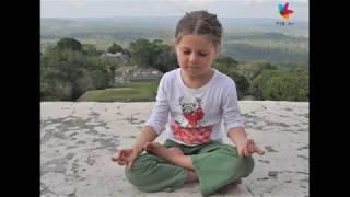 Zdravo živo 115 meditacija, kurkuma, zakon privlačenja, Brojs