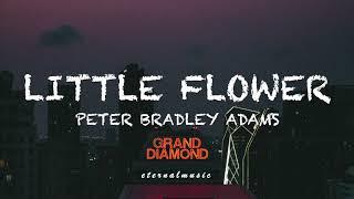 Little Flower - Peter Bradley Adams (lyrics)