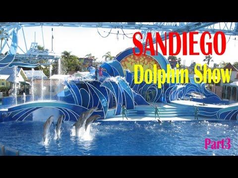 California Travel Destinations & Attractions   Visit Seaworld San Diego Dolphin Show 2016 Part3