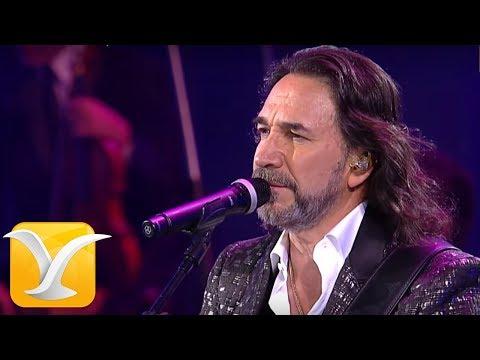 Marco Antonio Solís, Festival de Viña del Mar 2016