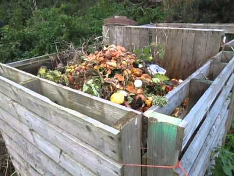 10 of the best Composting tips - Easy composting at home!