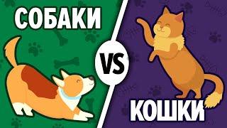 Кого выбрать в домашние питомцы? Кто лучше: собака или кот? Давай сравним 13+