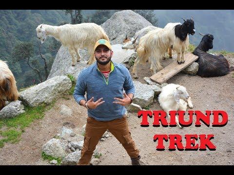 Triund || Travel Diaries with Kamz Singh || Kamz Kreationz