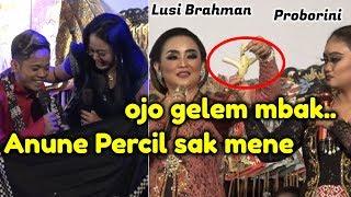 Download lagu PERCIL CS LUSI BRAHMAN PROBORINI 2 SEPTEMBER 2019 Sukoharjo Bancar Tuban MP3