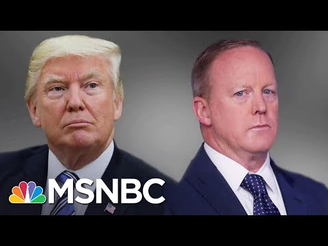 Sean Spicer Can't Say If Donald Trump Believes Russia Hacked 2016 Election   The 11th Hour   MSNBC