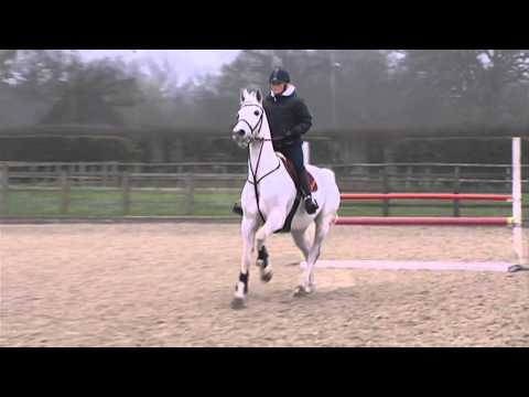 Showjumping - Dan Neilson At Home - April 2011