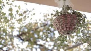 |Stefano+Daniela Wedding day| Fedula (Italy, Calabria) | Bokehlicious Ivan L'Astorina