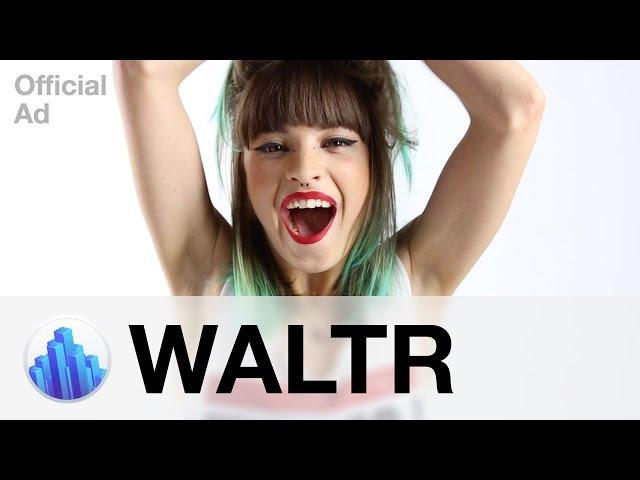 Интервью с создателями Waltr  Как дерзость и креатив привели