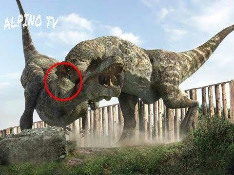Este Dinosaurio Era El Terror Del Tiranosaurio Rex Youtube Desde feroces terópodos como el tiranosaurio rex y el spinosaurus hasta en la actualidad se han identificado y nombrado más de 700 especies diferentes de dinosaurios. terror del tiranosaurio rex