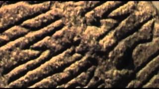 Rune Synth 1