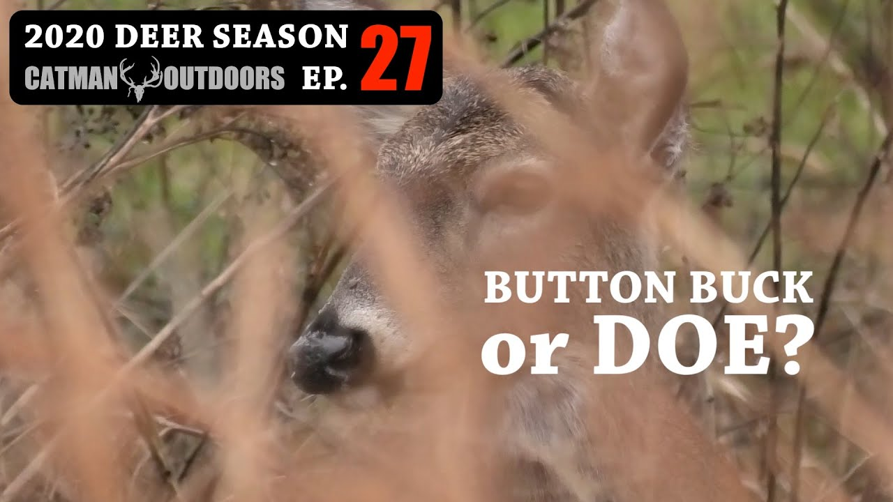 Up Close and Personal - 2020 Deer Season Ep 27
