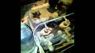 moteur indenor de la 403 à froid