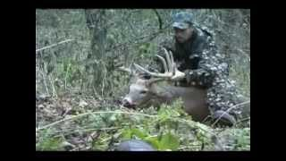 MONSTER PA 12 POINT BUCK ARCHERY KILL (SCORE 157)
