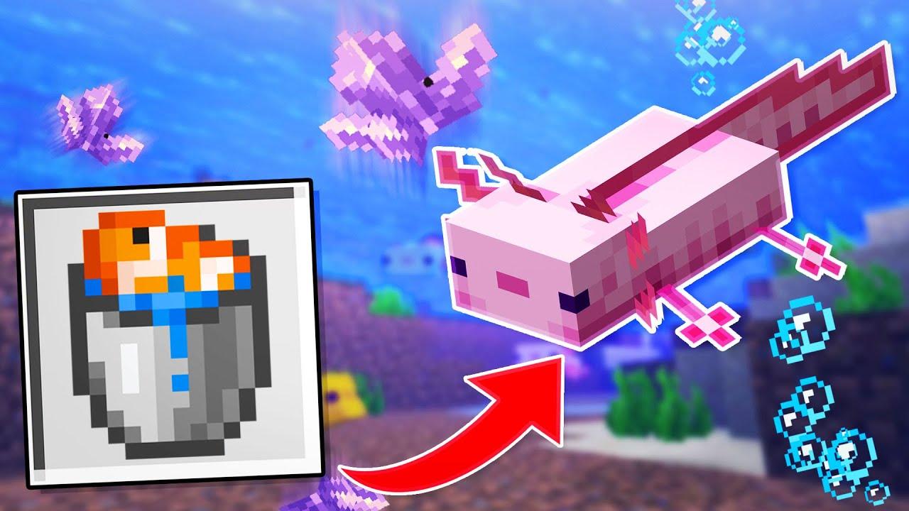 Download Geheime Tips en Tricks Voor Minecraft 1.17! 😱