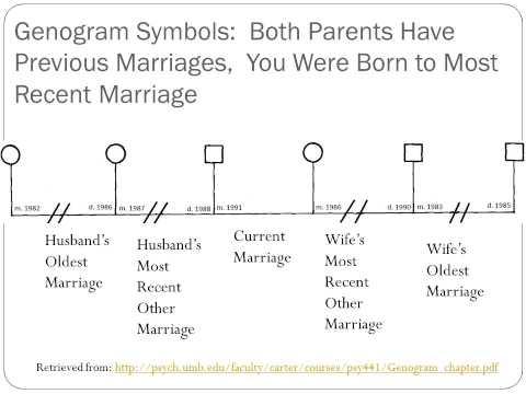 How To Make A Genogram