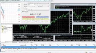 100 $ kostenlos für Forex zum Traden bekommen ohne Einzahlung