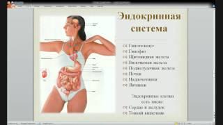 Восстановление и профилактика здоровья щитовидной же(Получить вторую часть лекции: http://netex.e-autopay.com/checkout/138042., 2015-05-26T20:13:08.000Z)
