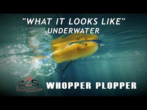 River2Sea Whopper Plopper | What It Looks Like Underwater