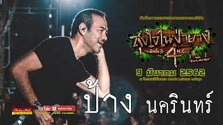 ป้าง นครินทร์ LIVE คอนเสิร์ตสุขใจในป่ายาง มีทติ้ง MC ครั้งที่4 ตอนป่ายางมหาสนุก 9-3-62