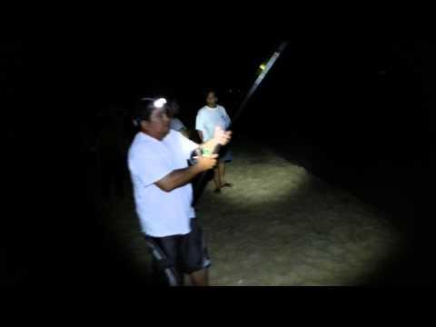 Ulua caught from shoreline fishing Waianae, Hawaii 10 12 2013