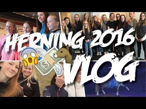 Herning Hingstekåring 2016 VLOG - Mille Jørgensen
