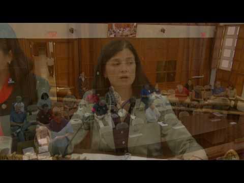 Public Hearing - Therese M. Terlaje - April 4, 2017