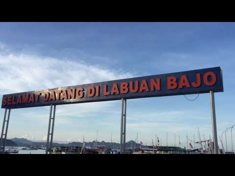 Travel Journal: Office Outing to Labuan Bajo