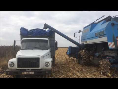 Перевозка кукурузы на ГАЗ 3309