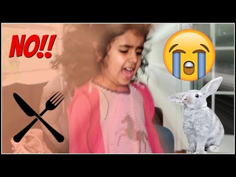 EATING MY NIECE'S FIRST EVER PET! (Bunny Rabbit Surprise!)