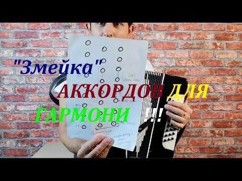 Самоучитель игры на гармони для начинающих видео уроки аккорды