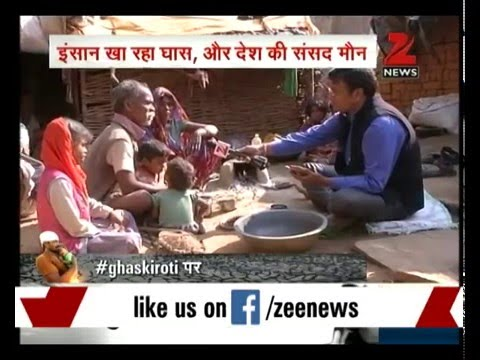 Poverty in Bundelkhand making villagers eat grass for survival