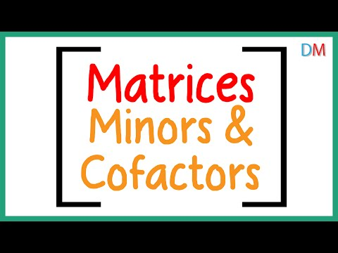 Matrices – Minors and Cofactors