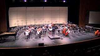 3 Blind Mice - Beginner Orchestra at Strings Fest 2015