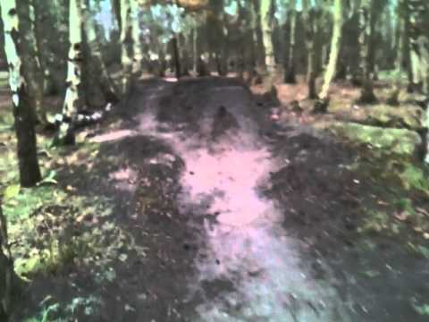Skipwith Common dirt jumps
