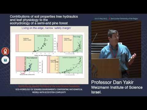Prof. Dan Yakir: soil properties tree hydraulics and leaf physiology in semi-arid pine forest
