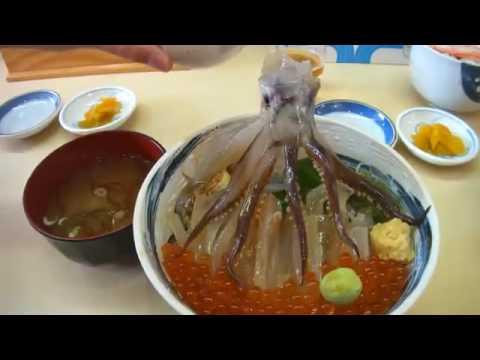 просмотра истории япония прыгающий осьминог блюдо лунных затмений