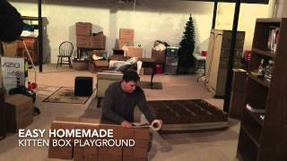 Building A Cardboard Box Kitten Playground. Super Fast And Easy.