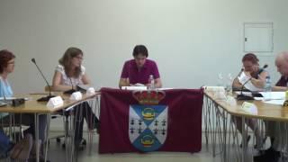 Pleno Ayuntamiento de Batres 30 de junio 2016 3/4