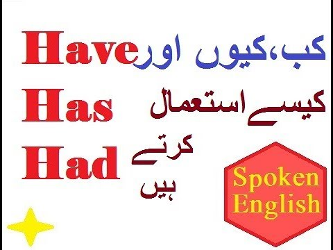 Have, has and had ! English Grammar Basics In Urdu~ when to use have, has and had