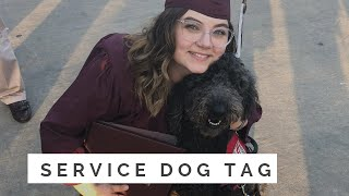 Service Dog Tag - All About Baylor!