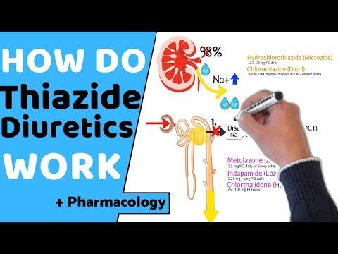 How Do Thiazide Diuretics Work? (+ Pharmacology)