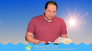 Watered By The Word 1 Peter 2 24