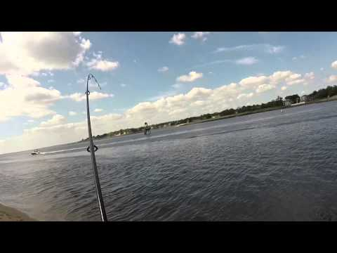 Summer Fishing, Great Kills Harbor - Mixed Bag