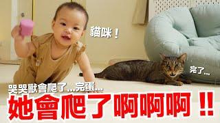【小貓奴養成記EP15】她會爬了啊啊啊哭哭獸會爬了...完蛋...