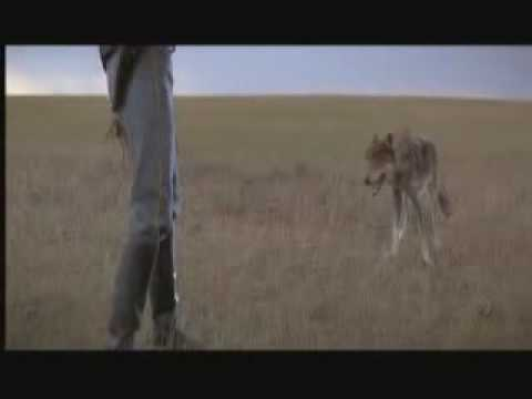 Dances With Wolves - Wolf Scene -- Lt John Dunbar Receives his Sioux Name (Deleted Footage)