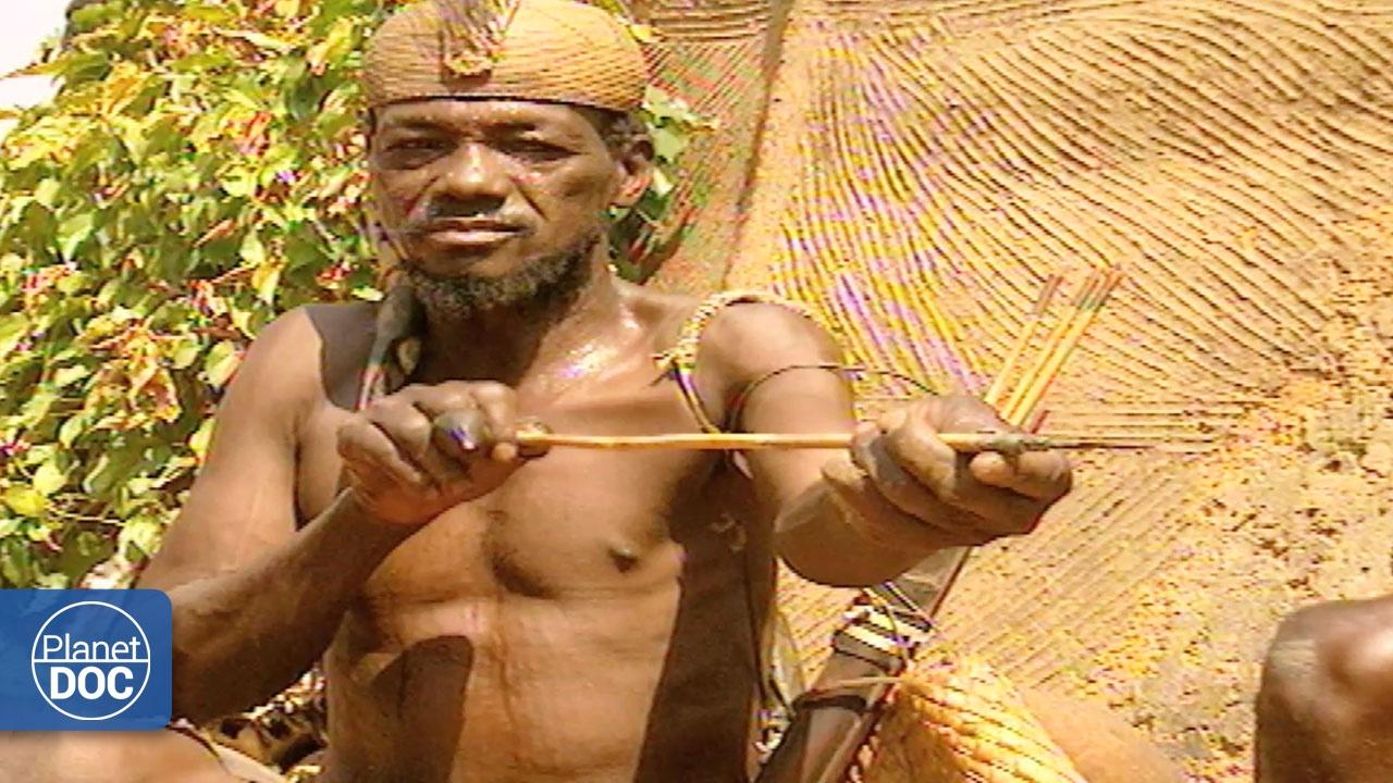 Cazadores Africanos Youtube