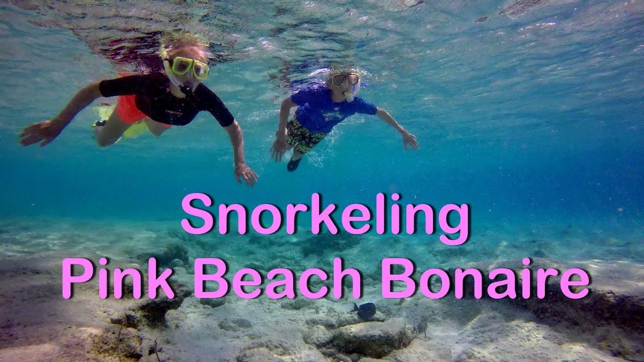Snorkeling At Pink Beach Bonaire