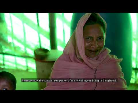 The Rohingya, The People in the Struggle for Existence
