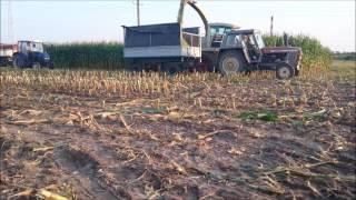 kukurydza na kiszonkę zs ckr okszw 2016