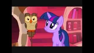 My Little Pony : Les amies c'est magique - Saison 1 : Leçons d'amitiés